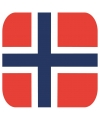 Glas viltjes met Noorse vlag 15 st