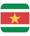Glas viltjes met Surinaamse vlag 15 st