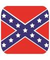Glas viltjes met Redneck vlag 15 st